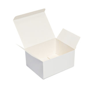Business Card Box – BBC250-1  Holds 250 cards (Bundle of 50)