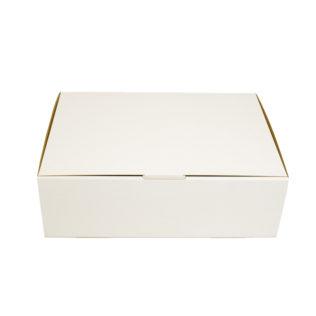 Large Mailing Box White (Bundle of 25)
