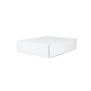 TSW Large Mailing Box White (Bundle of 25)